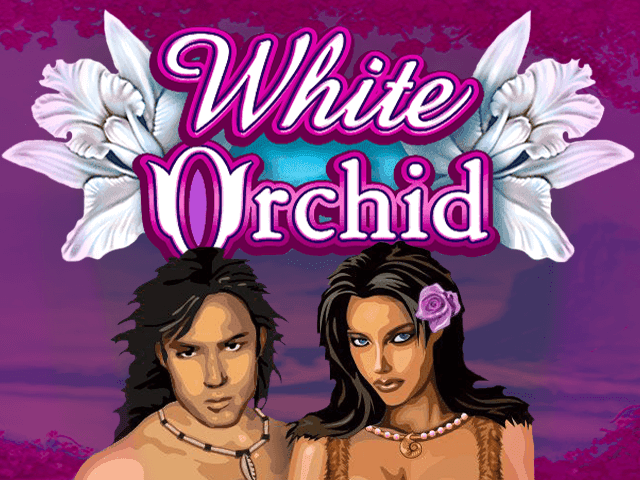 слот White Orchid